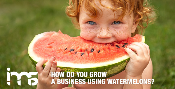 How-do-you-grow-a-business-using-watermelons