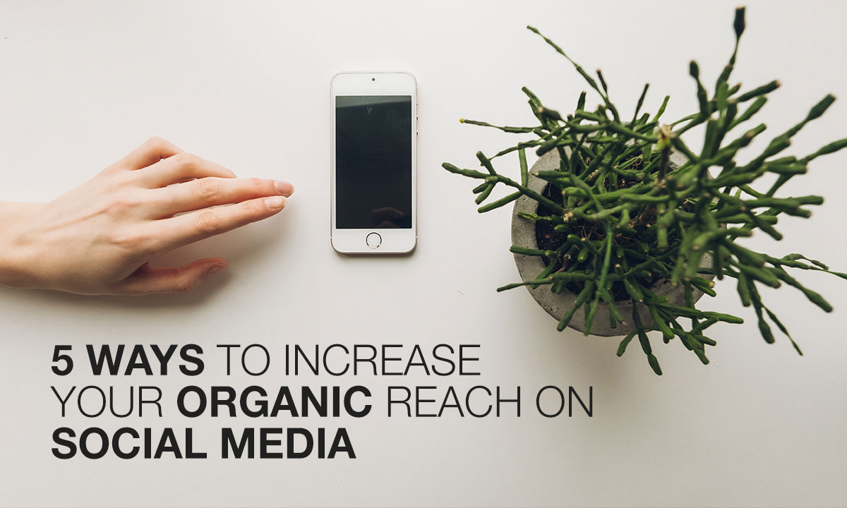 5-ways-to-increase-your-organic-reach-on-Social-Media